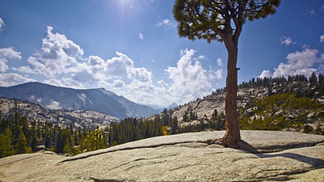 yosemitehd1.jpg