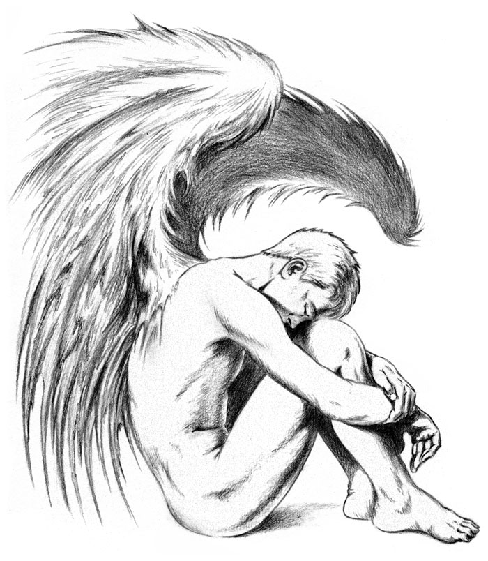 Fallen Angel Drawings